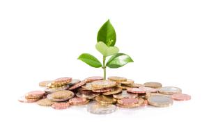 Seed-Capital